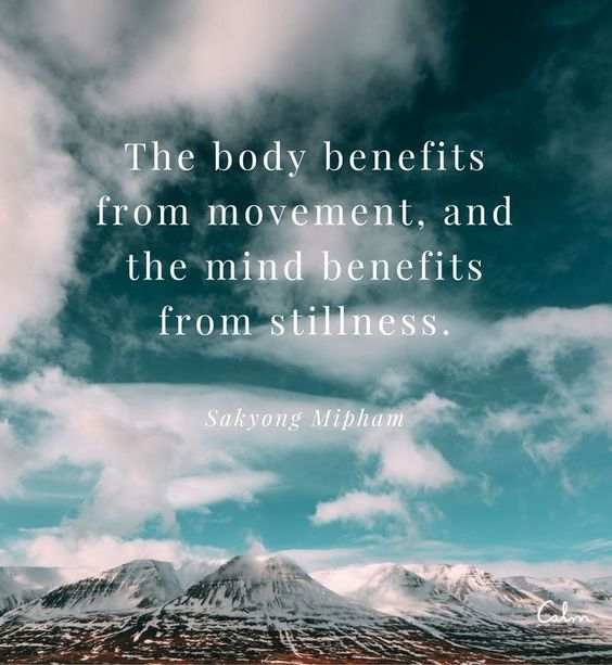 movement and stillness